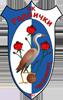 Radnicki_Capljinac