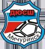 DYSH_Michurinsk