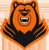 Logo_molot