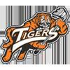 tigry
