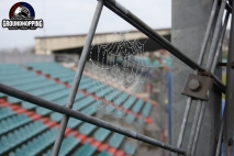 Stade Josy Barthel - 06